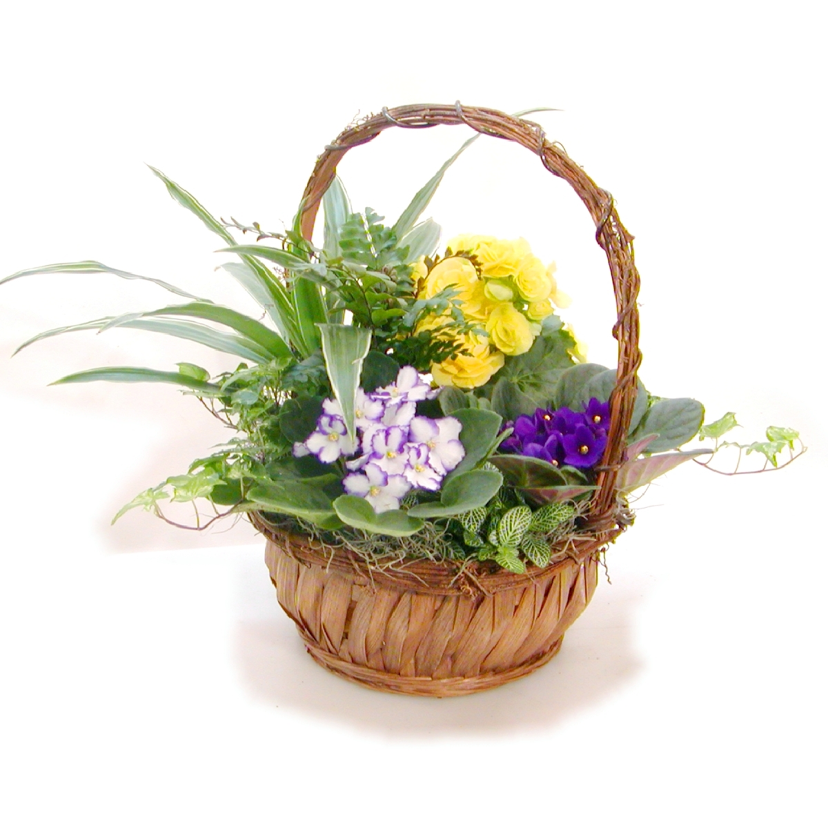 Images Of Flower Baskets : Medium flower basket