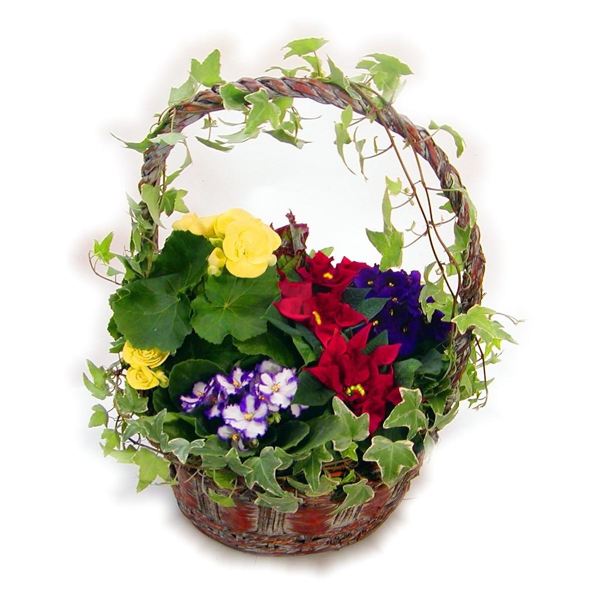 Large flower basket 10 in mightylinksfo