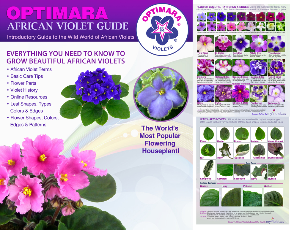 Optimara African Violet Guide Includes Usa Shipping